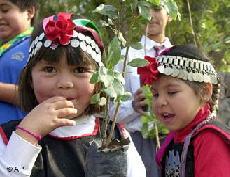 niña y niño mapuche