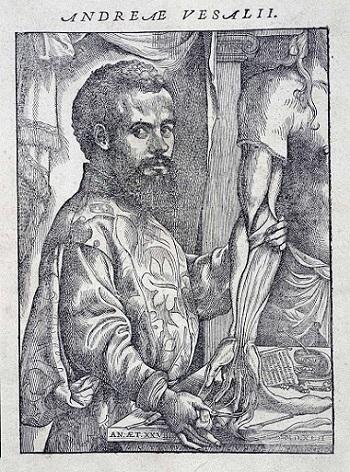 Retrato de Vesalio examinando un cuerpo disectado; en la introducción del libro De la Fábrica del Cuerpo Humano. Fuente: The British Library.